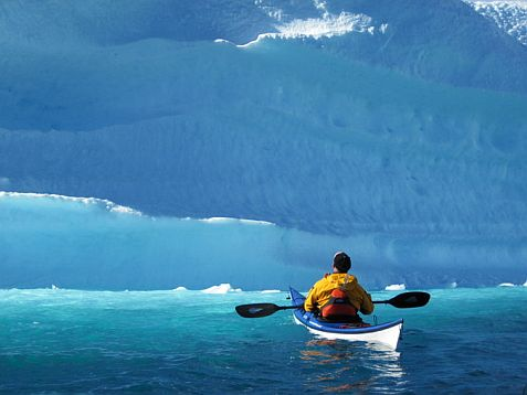 Greenland Wilderness And Wildlife Sea Kayak Expedition Summer